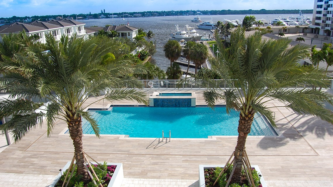 two palm trees in front of the encore pool looking to intracoastal